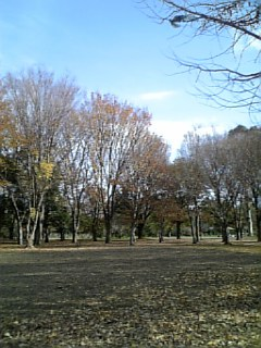 武蔵小金井公園