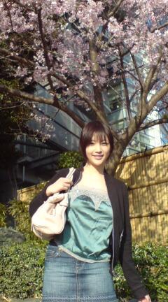 桜開花!!