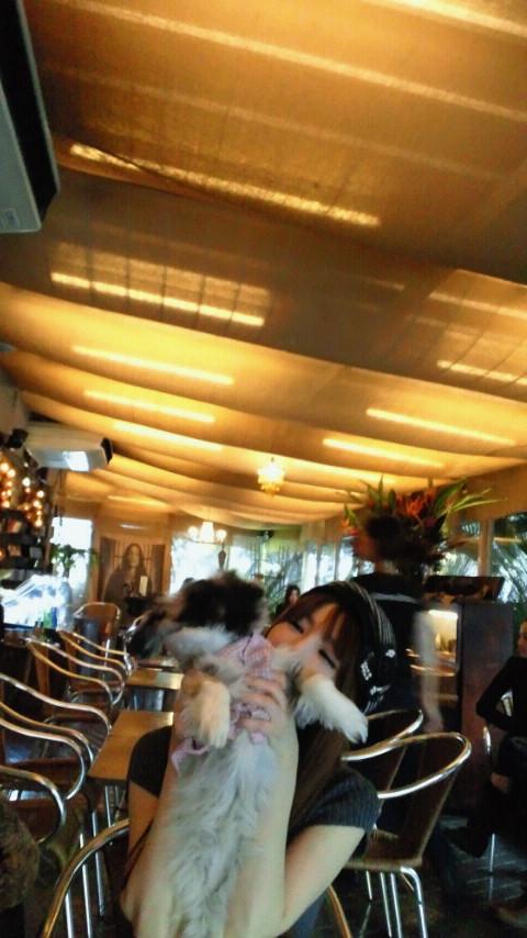 ロシア料理→dogcafe<br />  巡り